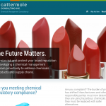 Cattermole Consulting Inc.